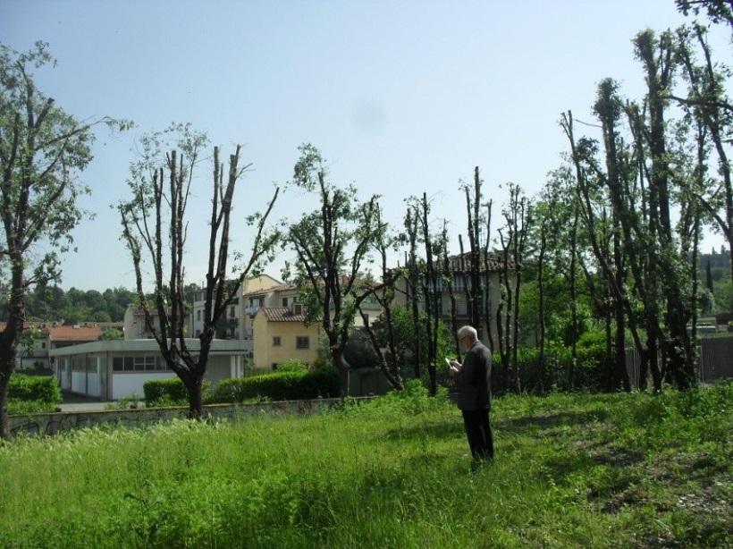 agronomo forestale de luca firenze