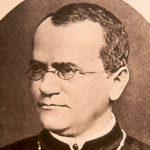 Mendel: il genio che scoprì l'omozigosi