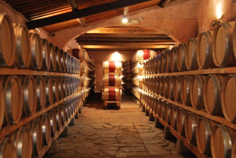 cantina vino visita wine tasting