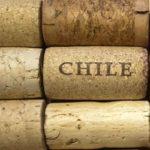 Il vino del Cile