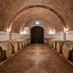 cinelli colombini vino agricoltura agraria