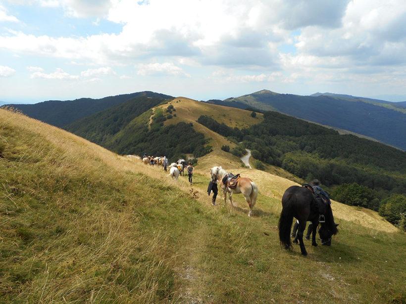 trekking cavallo escursione