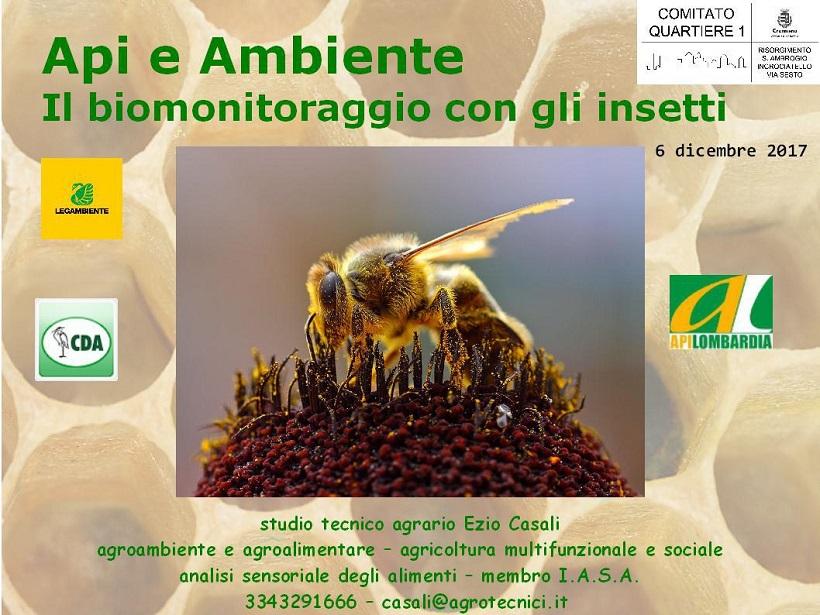api ambiente
