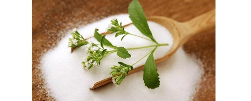 estratto foglie stevia zucchero dolcificante