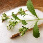 Stevia rebaudiana Bertoni, il nuovo modo di dolcificare… e non solo