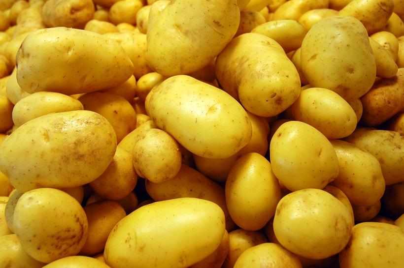 patata tubero