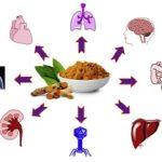 piante benefici alimentazione cibo dieta