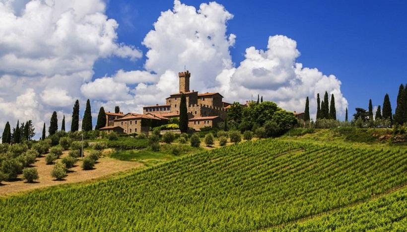 castello banfi brunello vino