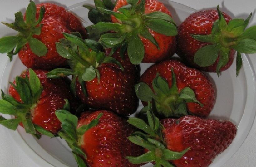 fragole frutti