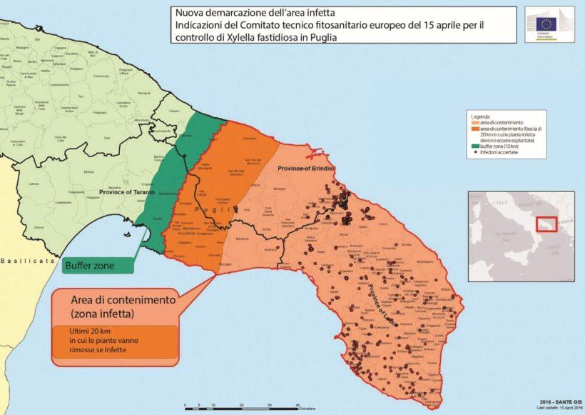 xylella fastidiosa cartografia zona infetta puglia