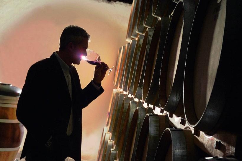 enologo vino cantina