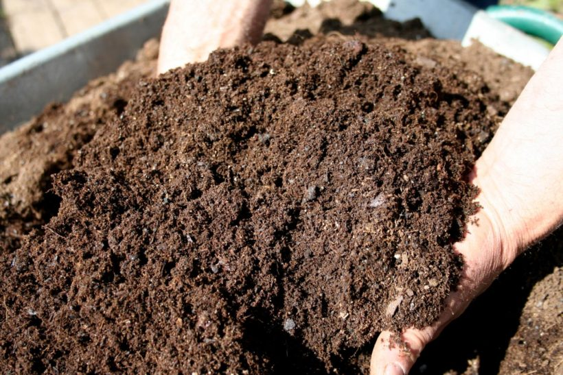 fertilizzare compost concime