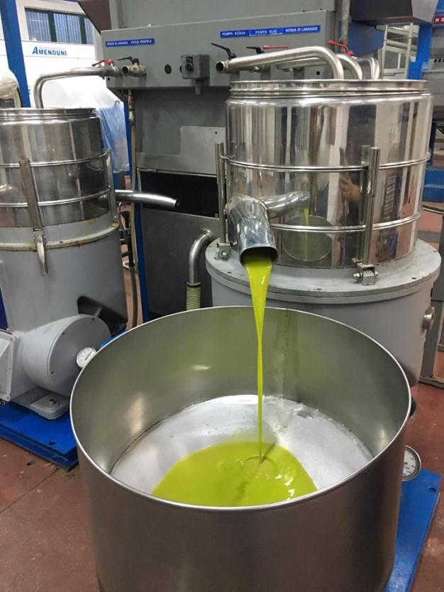 Produzione dell'olio extravergine di oliva