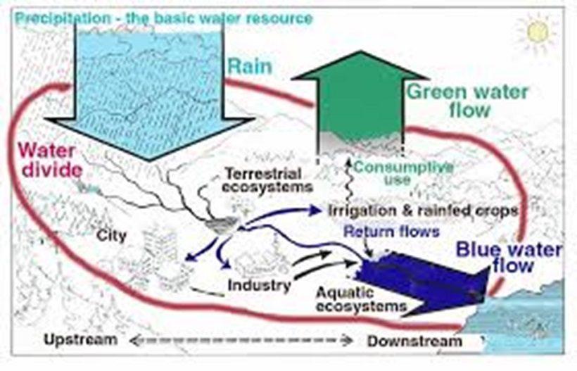 servizi ecosistemici suolo natura bosco terreno ambiente ecosistema