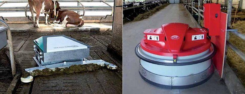 robot pulizia sale di mungitura