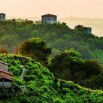 Prosecco, uno straordinario successo italiano