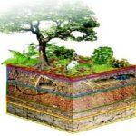 consumo di suolo agricolo paesaggio