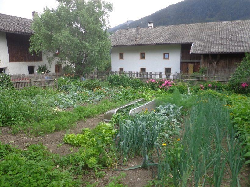 Orto-giardino in Alto Adige