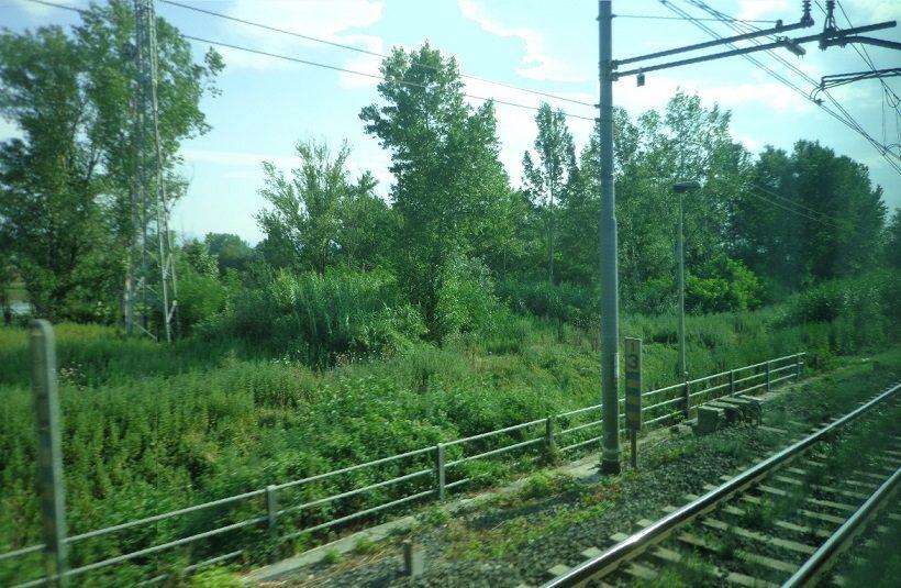 parco della piana lavorazioni agricole