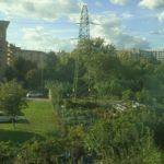 Aspetti agrari e vegetazionali di pregio nel Parco della Piana - Città metropolitana di Firenze