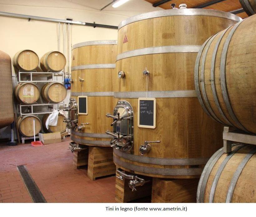 tino legno vino cantina