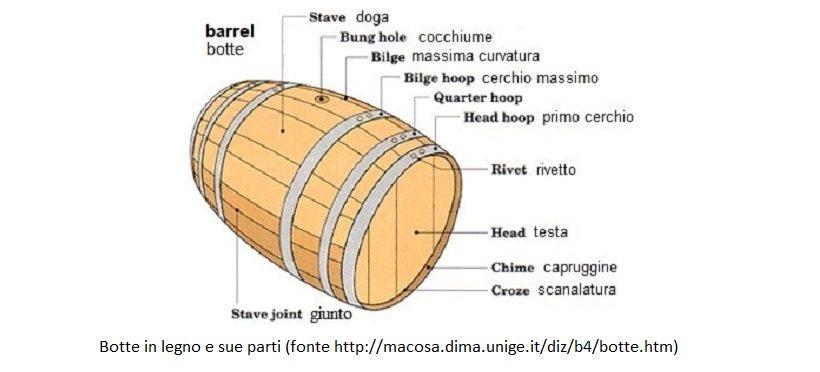 botte vino cantina legno