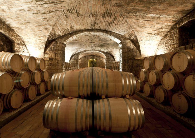 legno vino enologia cantina solaia antinori