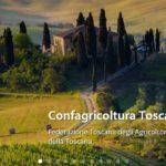 vino toscana perdite crollo coronavirus