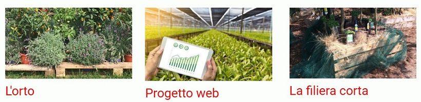 progetto web digitale agricoltura agricolo azienda agroalimentare internet