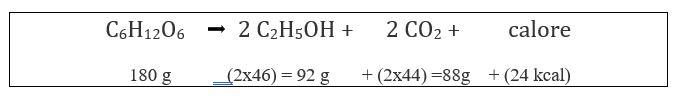 fermentazione alcolica formula reazione