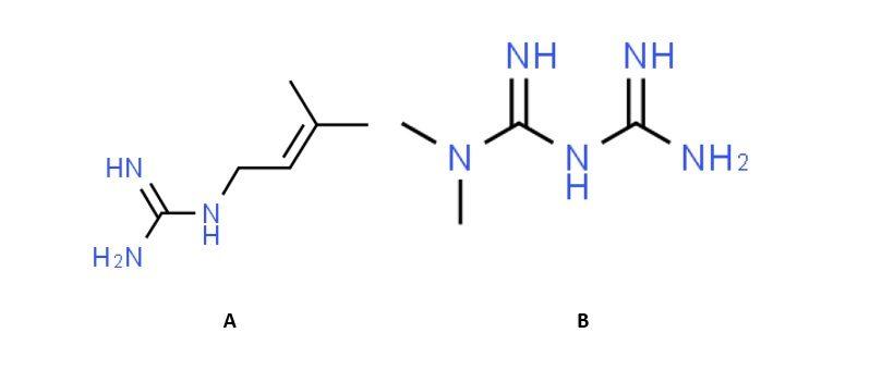metformina e galegina