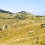 Sulle pendici meridionali del Monte Mutria: tra biodiversità e prati-pascolo