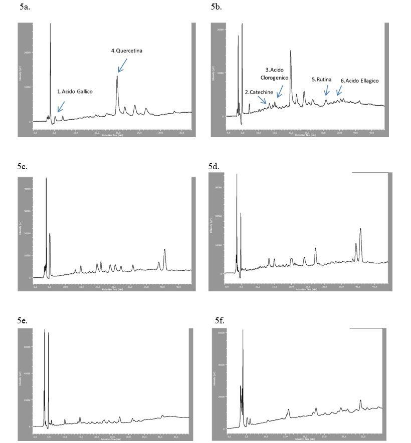 Profili cromatografici relativi a foraggio fresco ed essiccato