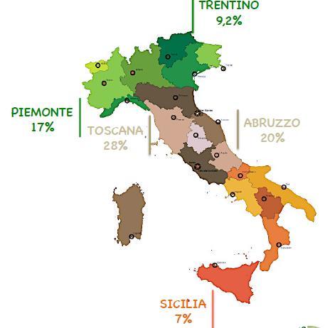 Distribuzione vini vegani in Italia