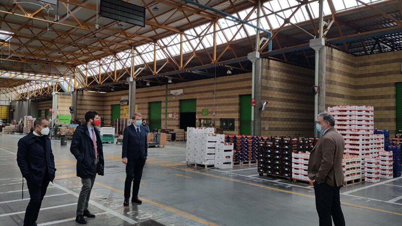 Restyling Mercato Ortofrutticolo Cesena