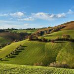 Sostenibilità in agricoltura: valutare e certificare i sistemi produttivi con l'impronta ecologica