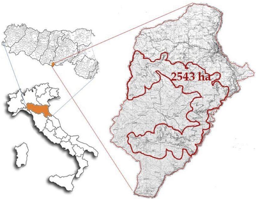 Indicazione geografica