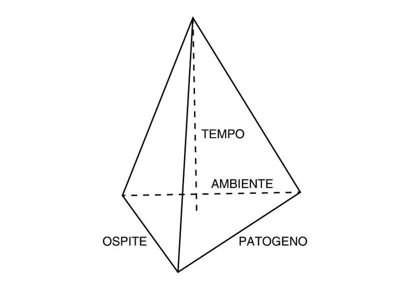 Piramide di malattia